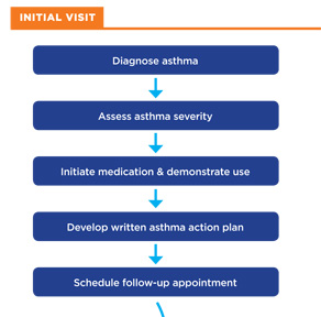 Initial Visit>Diagnose asthma>assess asthma severity>Initiate medication & demonstrate use>Develop written asthma action plan>Schedule follow-up appointment