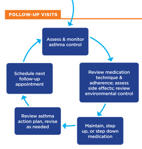 Follow up asthma visit flow including assess and monitor, review medication, make medication changes, review action plan, schedule next appointment