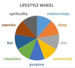 Managing Anxiety in Children-Healthy Lifestyle Wheel